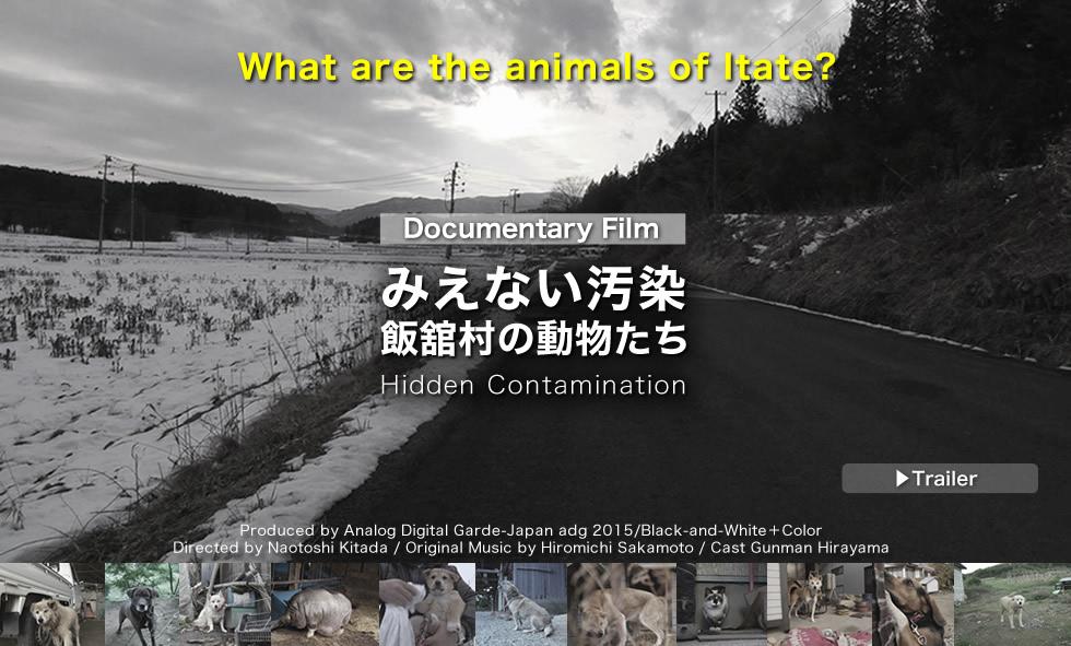 ドキュメンタリー映画 みえない汚染 飯舘村の動物たち